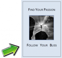 find your passion, follow your bliss, leadership